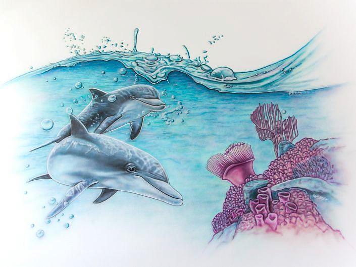 Dolfijnen zolder
